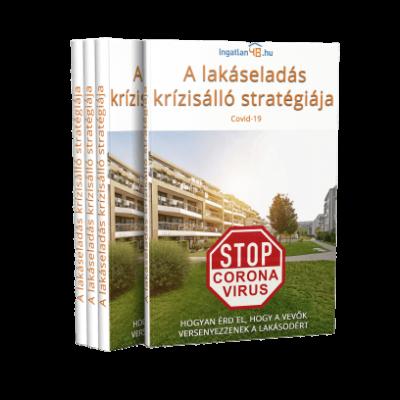 A lakáseladás krízisálló stratégiája (e-book)